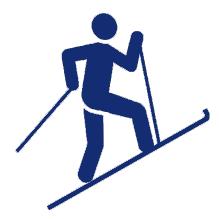 skidefond-icon